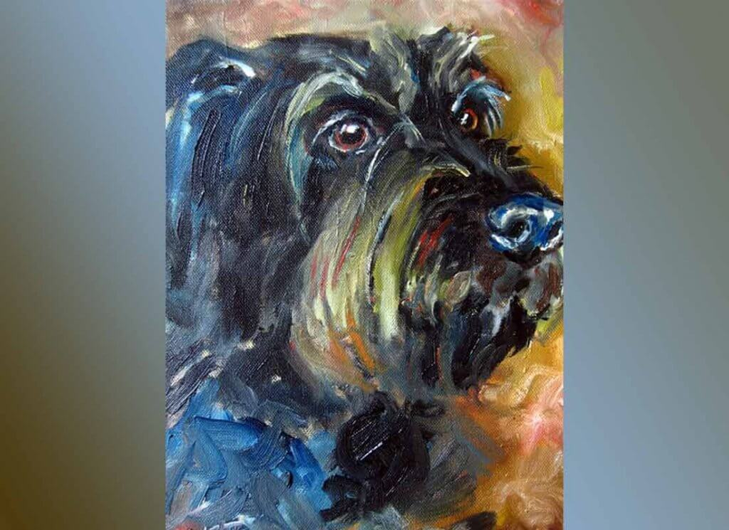 Cora - Portrait einer Hundedame